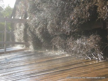 Tężnia solankowa w Parku Zdrojowym - detal, Konstancin-Jeziorna
